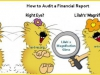 Audit Financial Reports